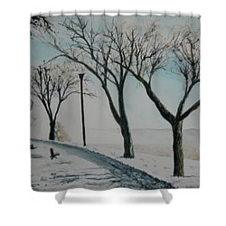 Shower Curtain featuring the painting Winter Mist by Betty-Anne McDonald