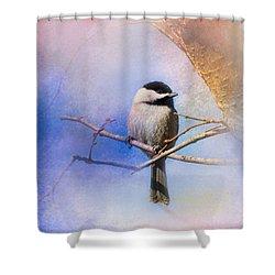 Winter Morning Chickadee Shower Curtain by Jai Johnson