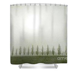 Winter Morning Londrigan 7 Shower Curtain by Linda Lees