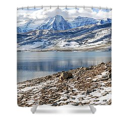 Winter Mt. Timpanogos And Deer Creek Reservoir Shower Curtain by Gary Whitton