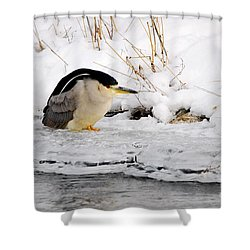 Winter Night Heron Shower Curtain