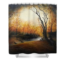 Winter Night Shower Curtain by Sorin Apostolescu