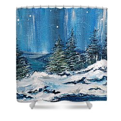 Winter Night Shower Curtain