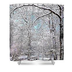 Winter On A Spring Day Shower Curtain