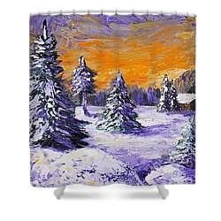 Winter Outlook Shower Curtain by Anastasiya Malakhova