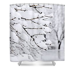 Winter Park Under Heavy Snow Shower Curtain by Elena Elisseeva