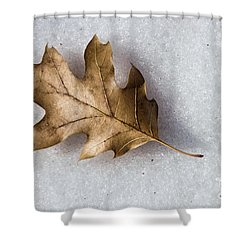 Winter Shower Curtain by Peggy Hughes