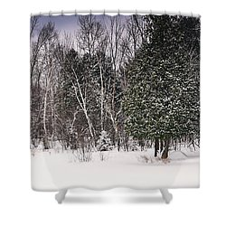 Winter Postcard Shower Curtain by Gwen Gibson