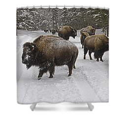 Winter Procession-signed Shower Curtain