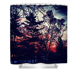 Winter Red Shower Curtain