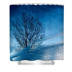 Winter Reflections Shower Curtain by Don Spenner