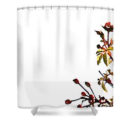 Shower Curtain featuring the photograph Winter Rose by Linda Shafer