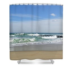 Winter Ruffians Shower Curtain