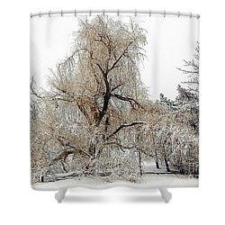 Winter Scene Shower Curtain by Kathleen Struckle