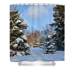Shower Curtain featuring the photograph Winter Scenery by Teresa Zieba