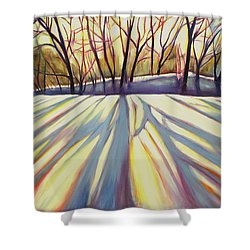 Winter Shadows Shower Curtain by Sheila Diemert