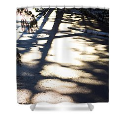 Shower Curtain featuring the photograph Winter Shadows by Yulia Kazansky