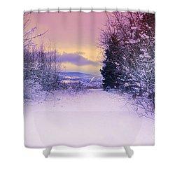 Winter Skies Shower Curtain by Tara Turner
