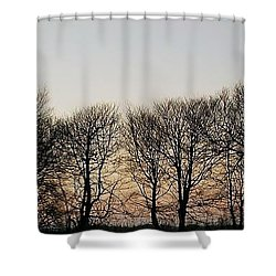 Winter Skyline Shower Curtain by Richard Brookes