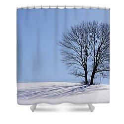 Winter - Snow Trees 2 Shower Curtain