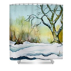 Winter Solitude Shower Curtain by Brenda Owen