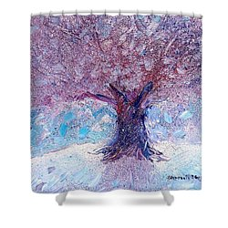 Winter Solstice Shower Curtain by Shana Rowe Jackson