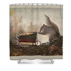 Winter Squirrel Shower Curtain