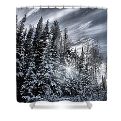 Winter Star Shower Curtain