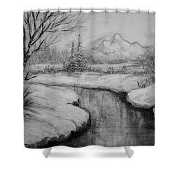 Winter Stillness Shower Curtain by C Steele