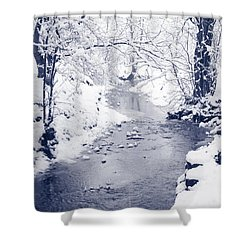 Shower Curtain featuring the photograph Winter Stream by Liz Leyden