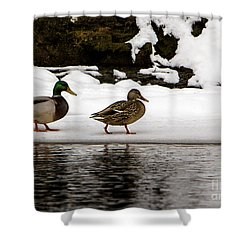 Winter Stroll Shower Curtain