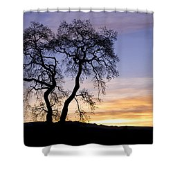Shower Curtain featuring the photograph Winter Sunrise With Tree Silhouette by Priya Ghose