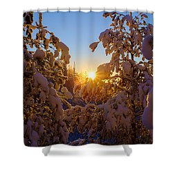 Winter Sunset Behind The Trees Shower Curtain