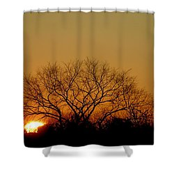 Winter Sunset Shower Curtain by Leeon Pezok