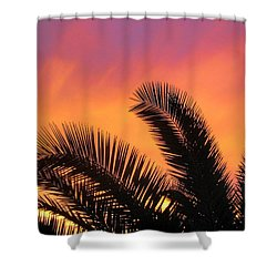 Winter Sunset Shower Curtain by Tammy Espino