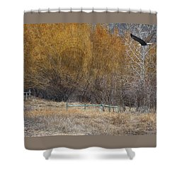 Winter Thaw Shower Curtain