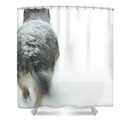 Winter Traveler Shower Curtain by Karol Livote