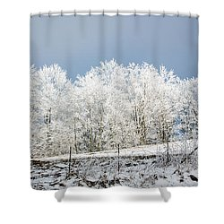 Winter Treeline Panorama Shower Curtain by John Haldane