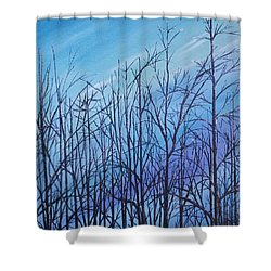 Winter Trees Against A Blue Sky Shower Curtain by Ellen Canfield