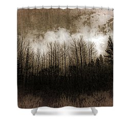 Winter Trees Shower Curtain by Dianne Phelps