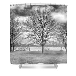 Winter Trees Shower Curtain by Howard Salmon