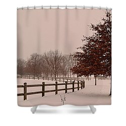 Winter Trees In Park Shower Curtain