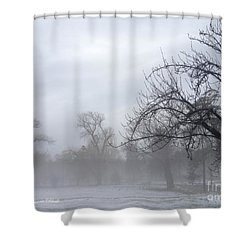 Shower Curtain featuring the photograph Winter Trees With Mist by Jeannie Rhode