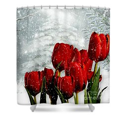 Winter Tulips Shower Curtain