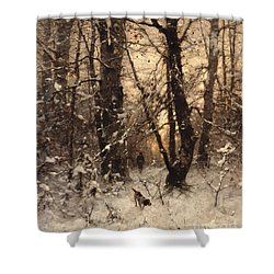 Winter Twilight Shower Curtain by Ludwig Munthe
