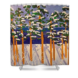 Winter Valley Shower Curtain