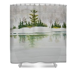 Shower Curtain featuring the painting Winter Vanity After Zolton Szabo by Betty-Anne McDonald