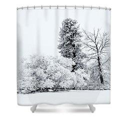 Winter White Shower Curtain by Mike  Dawson