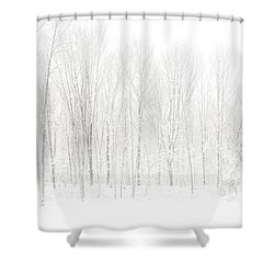 Winter White Out Shower Curtain by Karol Livote
