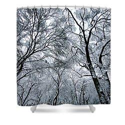 Winter Wonder Shower Curtain by Jeff Klingler